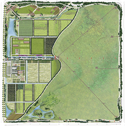 GCL Development Plan