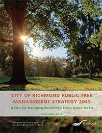 Revised Public Tree Strategy Cover