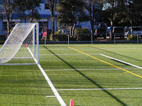Minoru Artificial Turf Field