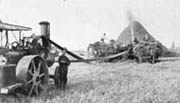 Threshing at Woodward's Landing